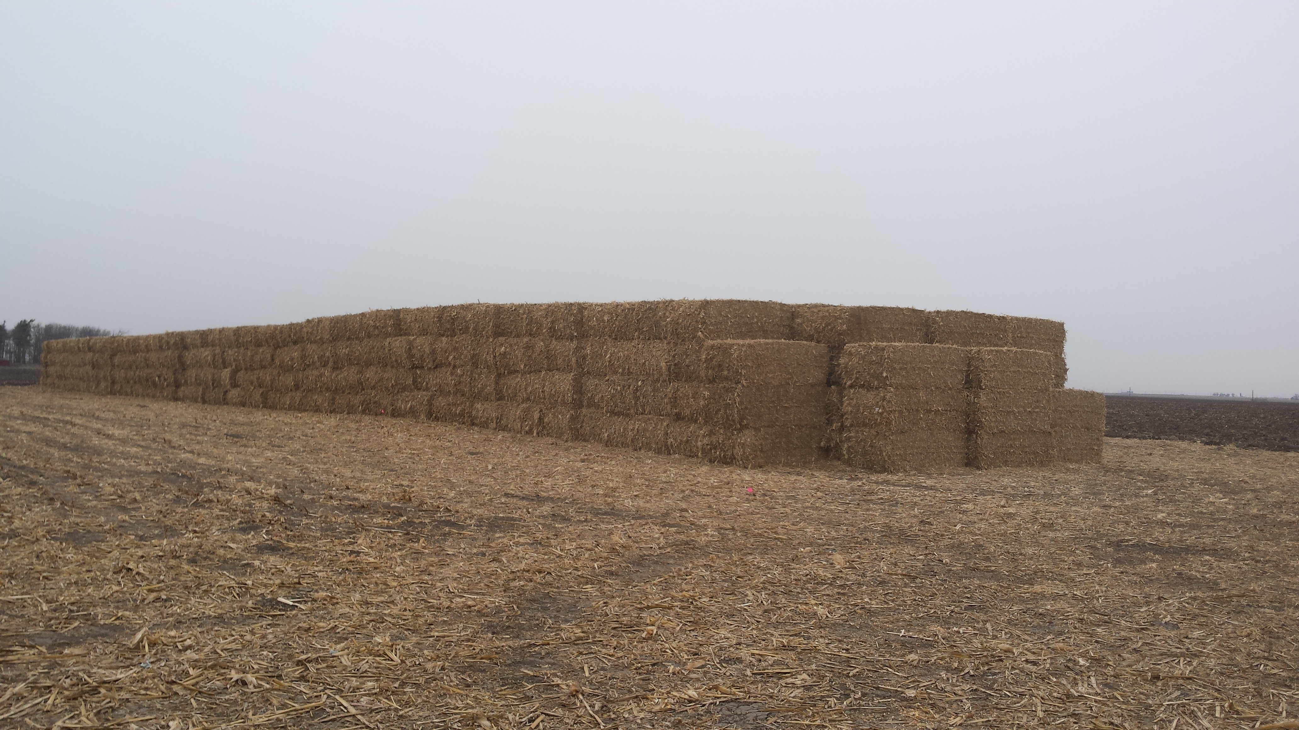 Stack of bales for the Cellulose Ethanol Plant